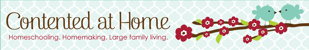 Centered Home Banner Full