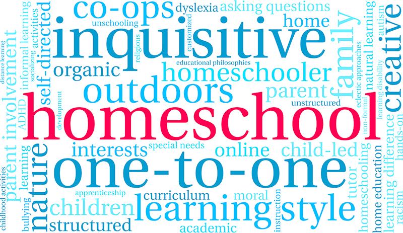 homeschool style homeschool teacher